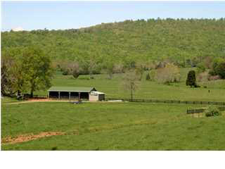 land for sale , MLS #415327, 361 Bridlespur Farm