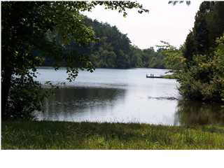 land for sale , MLS #444436, 0 Thomas Jefferson Pkwy