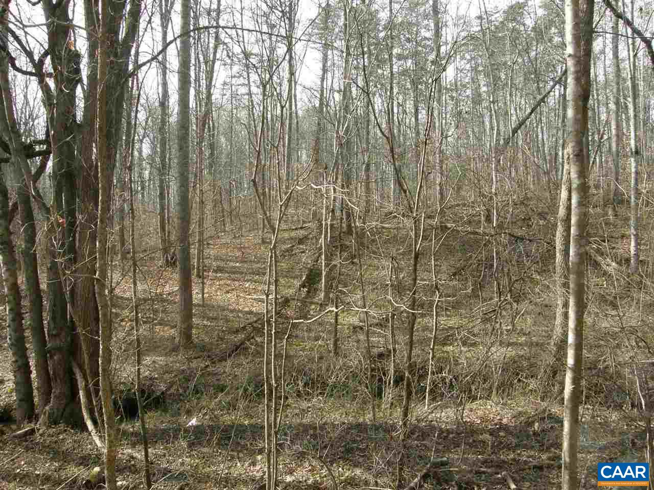 Land for Sale at 5 FOREST GLEN Drive Crozet, Virginia 22932 United States