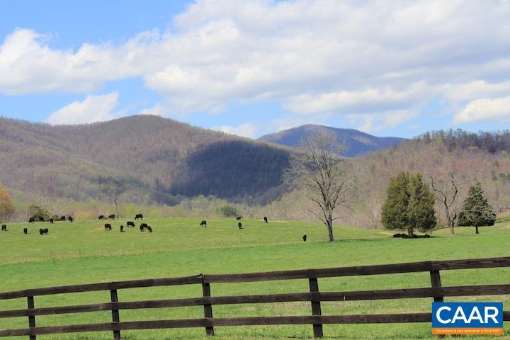 Land for Sale at tbd GARTH RUN Road Madison, Virginia 22727 United States