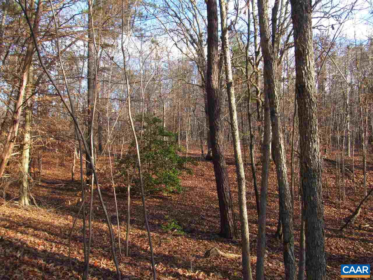Land for Sale at 53A54A/B E RIVER Road Fork Union, Virginia 23055 United States