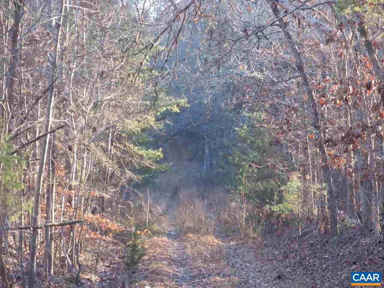 Land for Sale at 52 8 2 JAMES MADISON HWY Fork Union, Virginia 23055 United States