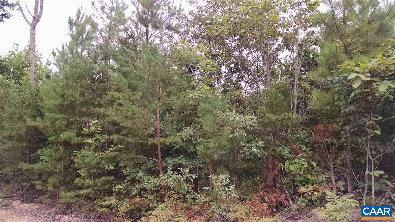 Land for Sale at FORTUNE Lane Keene, Virginia 22946 United States
