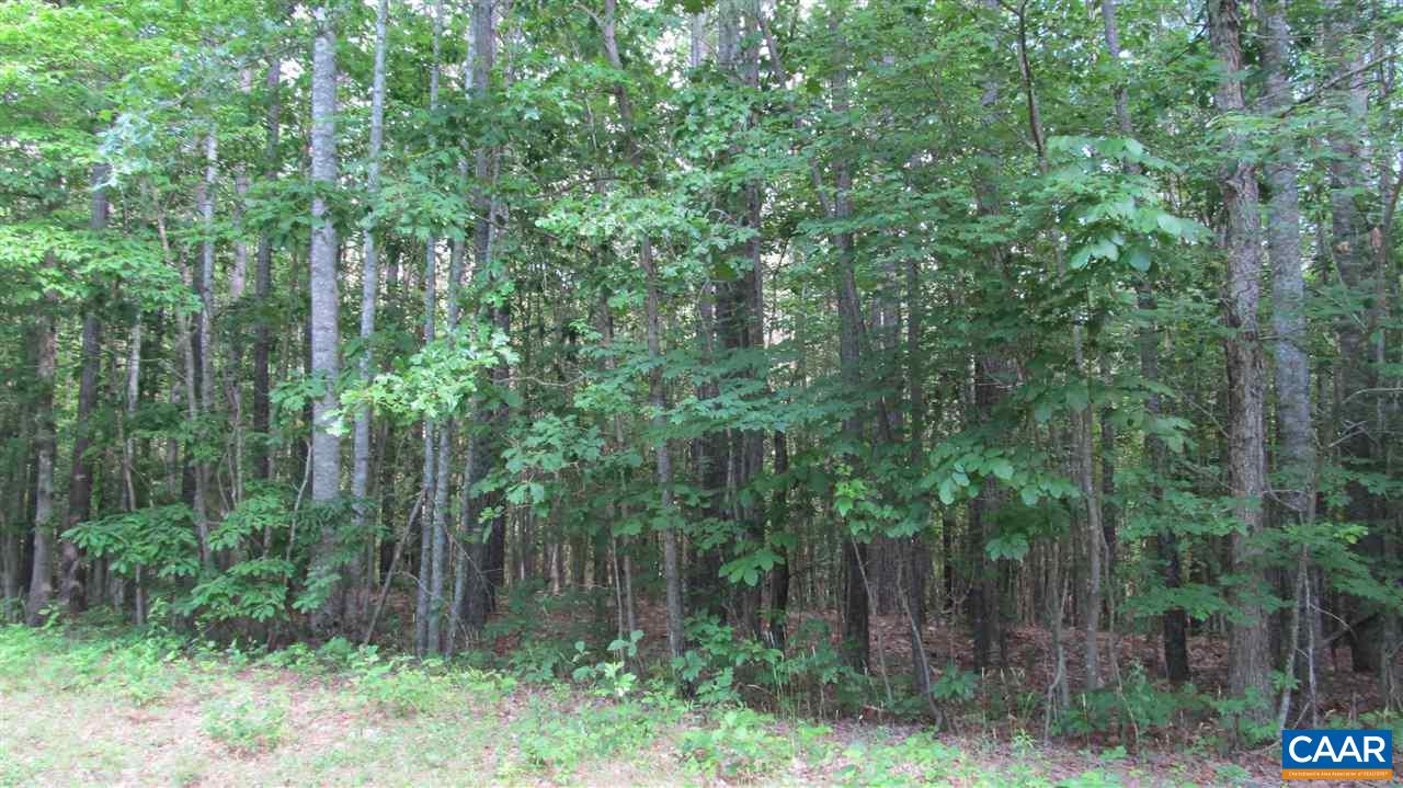 Land for Sale at 1855 COVERED BRIDGE Road Kents Store, Virginia 23084 United States