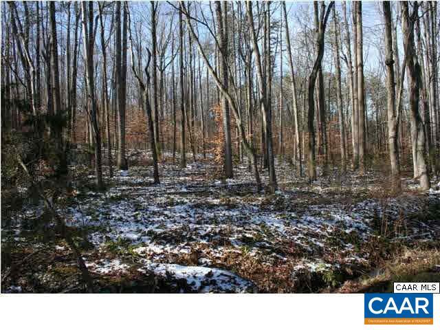 Land for Sale at 66 WILLIS FORD Lane Madison, Virginia 22727 United States