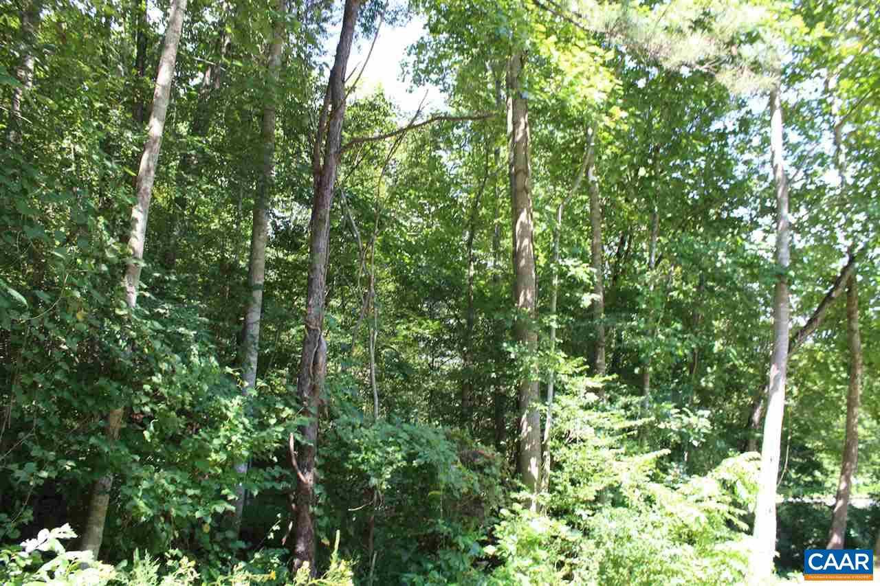 Land for Sale at RIVER Road RIVER Road Faber, Virginia 22938 United States