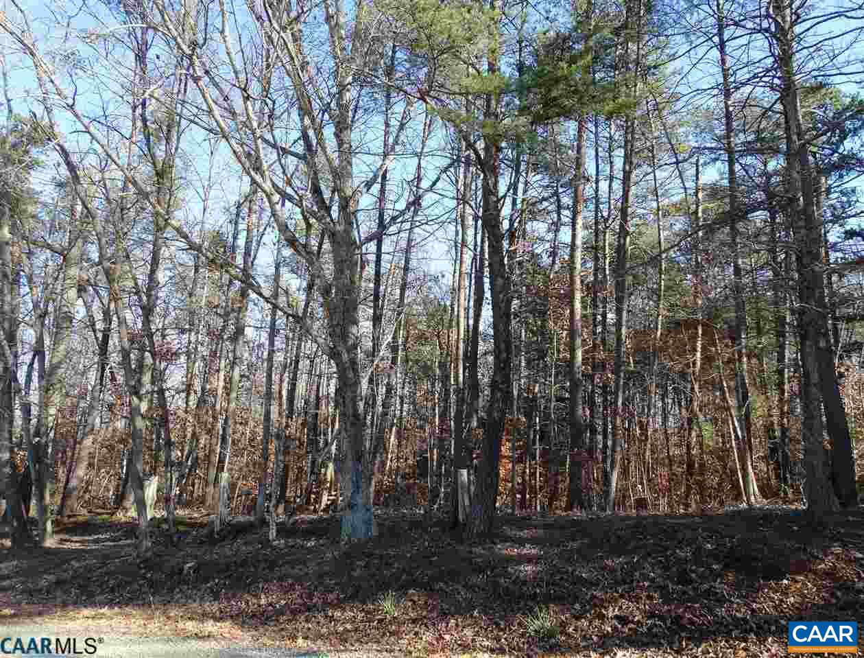 Land for Sale at 2 LONGSHOT Lane Madison, Virginia 22727 United States
