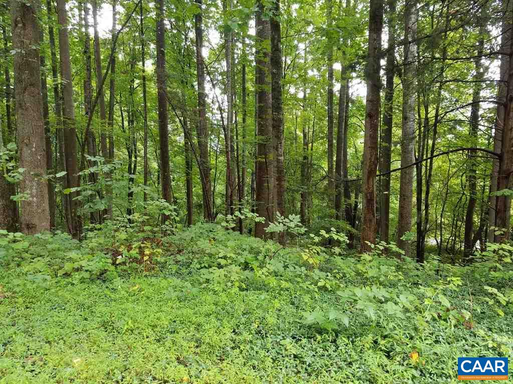 Lot 11 LISA LN, STANARDSVILLE, VA 22973