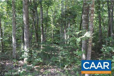 Land for Sale at F T VALLEY Road Madison, Virginia 22727 United States