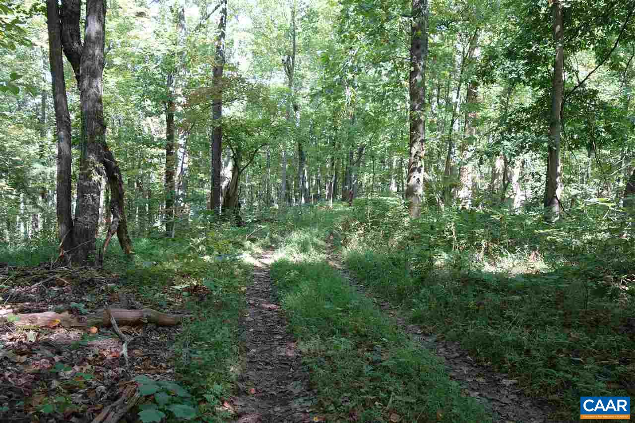 Land for Sale at 4B PIGEON TOP Trail Crozet, Virginia 22932 United States