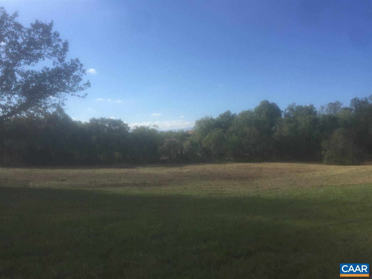 Land for Sale at REPTON MILL Road Aroda, Virginia 22709 United States