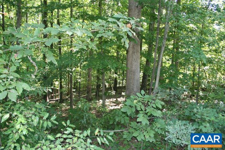 Land for Sale at BUGGY Lane BUGGY Lane Madison, Virginia 22727 United States