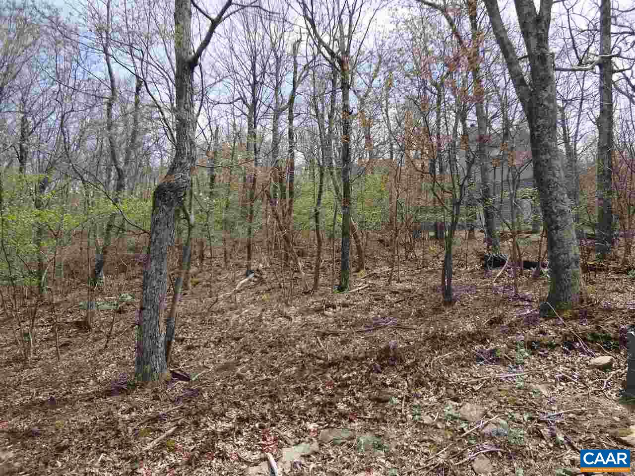 328 SHAMOKIN SPRINGS TRL Lot 72 Shamokin Springs, WINTERGREEN, VA 22958