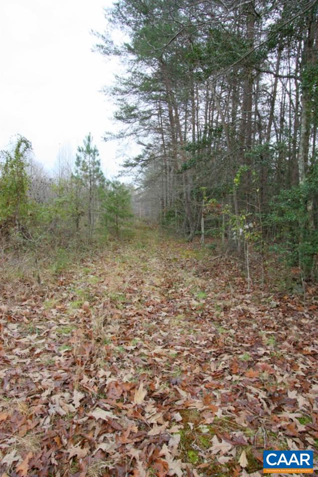Land for Sale at DAVIS MILL Road Goochland, Virginia 23063 United States