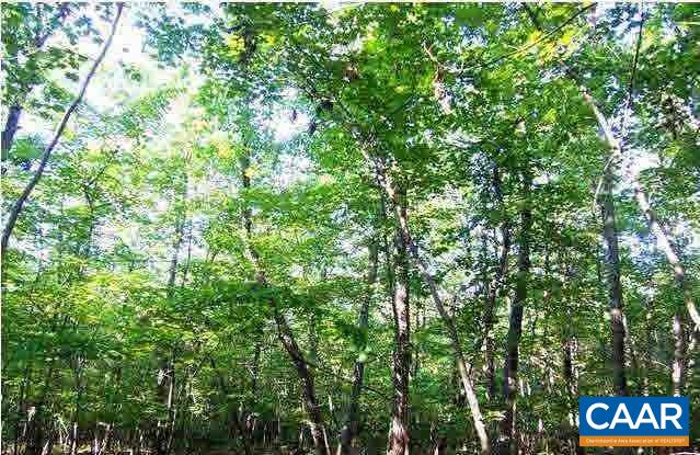 Land for Sale at KENTS STORE Road Kents Store, Virginia 23084 United States