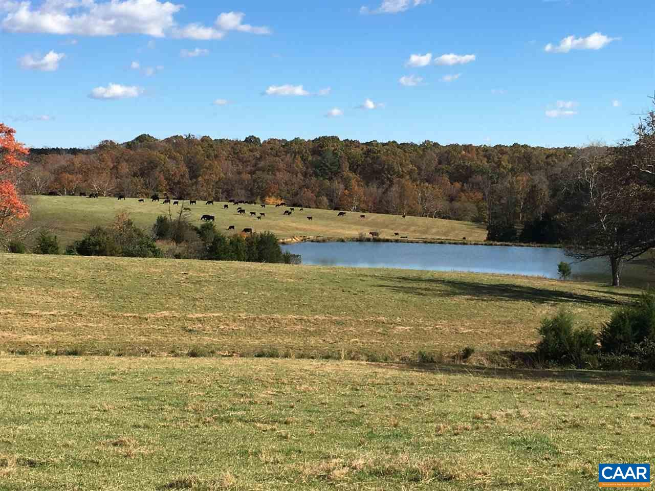 Land for Sale at 3950 SOUTH BOSTON Road Troy, Virginia 22974 United States