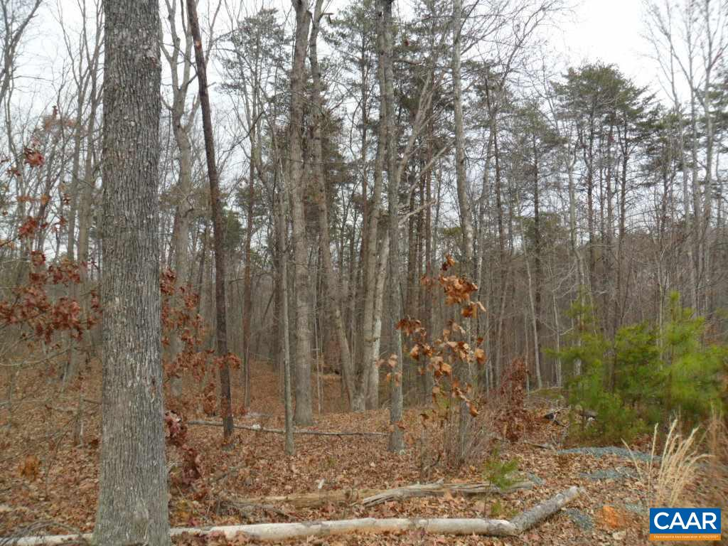 land for sale , MLS #556497, Lot 45A Buck Island Rd