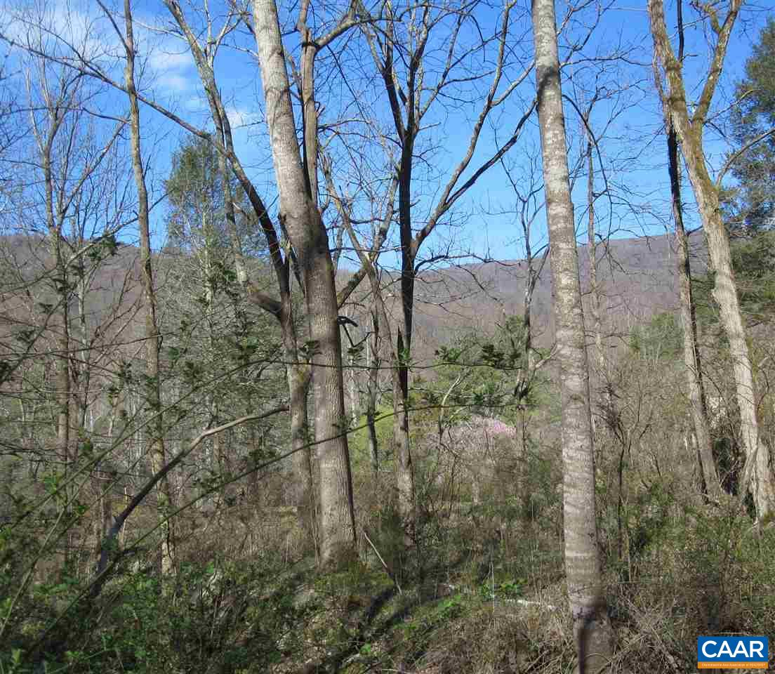 Land for Sale at TBD WEAKLEY HOLLOW Road Syria, Virginia 22743 United States