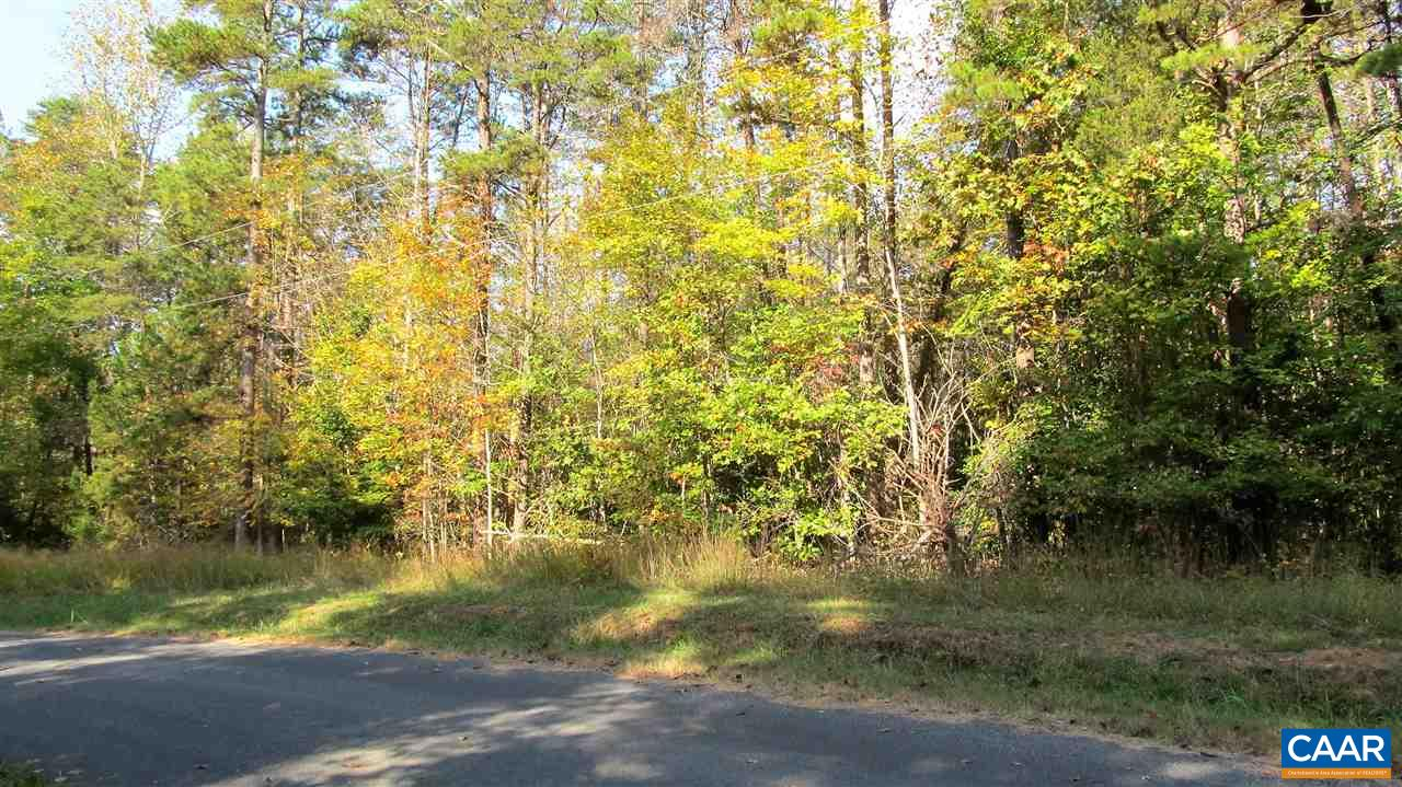 Land for Sale at RED BANK Lane Fork Union, Virginia 23055 United States