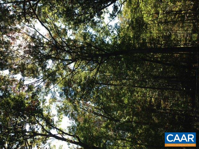 Land for Sale at MOUNTAIN HOLLOW Road Greenwood, Virginia 22943 United States