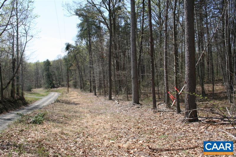 Land for Sale at DESERT Road Madison, Virginia 22727 United States