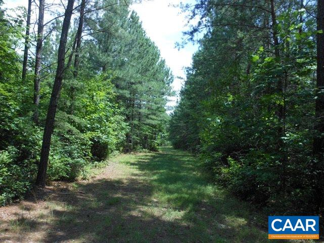 land for sale , MLS #564453, lot 14 Loblolly Ct