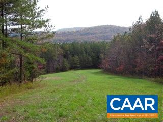 Land for Sale at tbd FORGOTTEN Lane Waynesboro, Virginia 22980 United States
