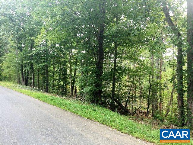 Land for Sale at TWYMANS MILL Road TWYMANS MILL Road Madison, Virginia 22727 United States