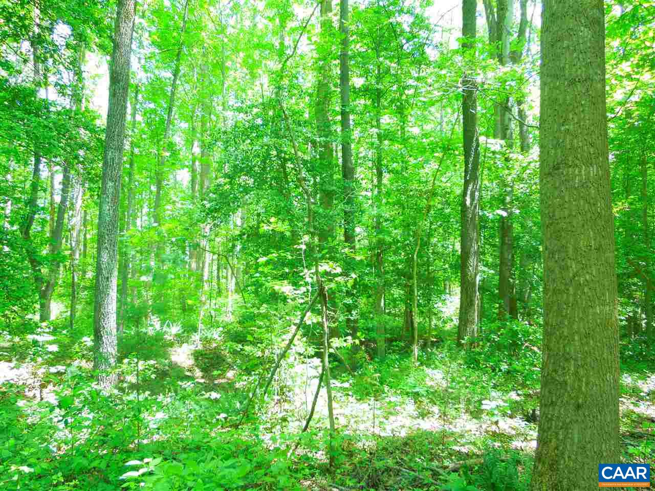 Land for Sale at 1858 HAWK TOWN Road 1858 HAWK TOWN Road Goochland, Virginia 23063 United States