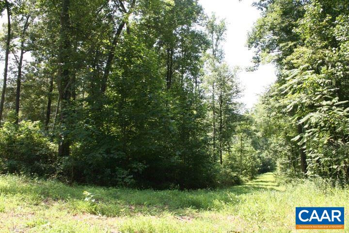 Land for Sale at THRIFT Road THRIFT Road Madison, Virginia 22727 United States