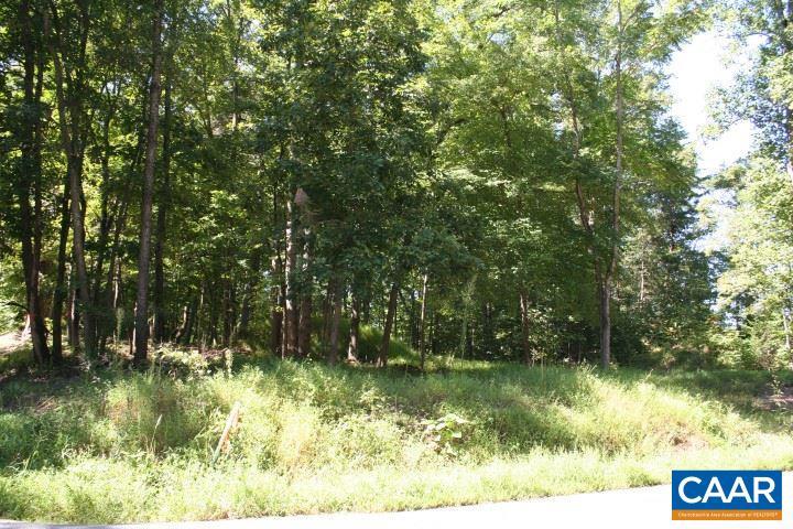Land for Sale at S BLUE RIDGE TPK S BLUE RIDGE TPK Madison, Virginia 22727 United States
