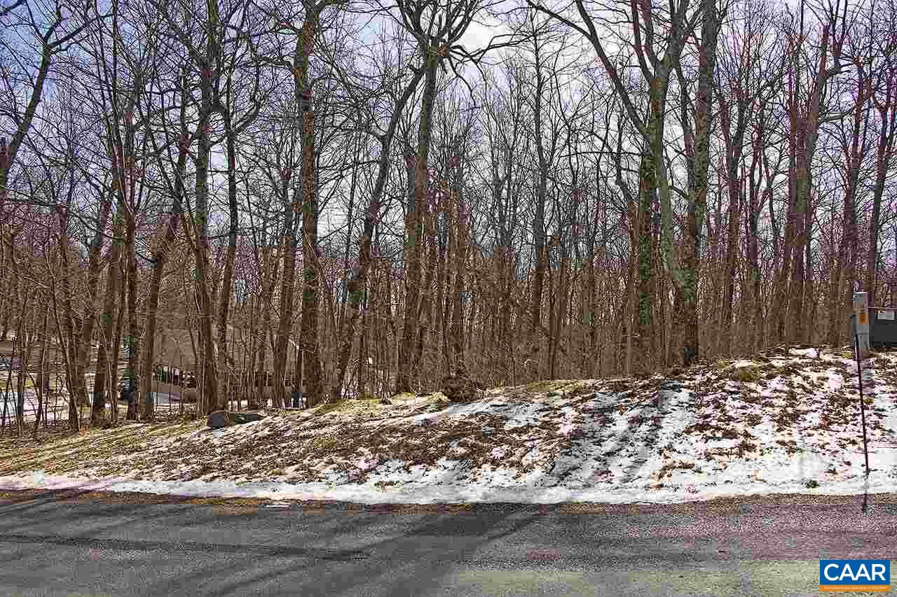 land for sale , MLS #567184, 48 Timber Camp Dr