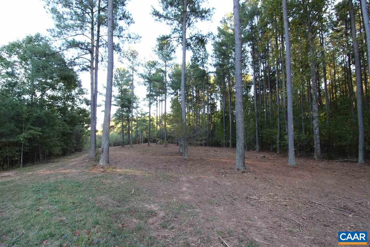 Land for Sale at 294 CINCINNATI Place 294 CINCINNATI Place Mineral, Virginia 23117 United States