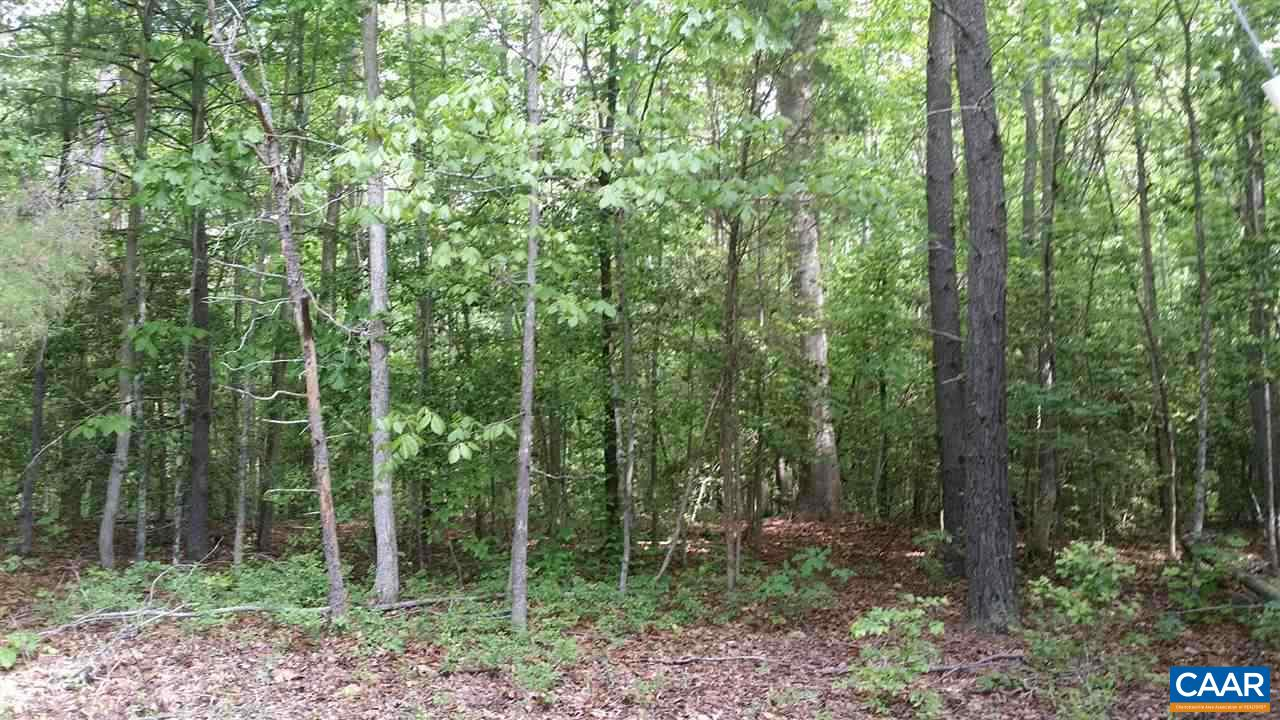 land for sale , MLS #568224, Lot 19 Peters Creek Rd
