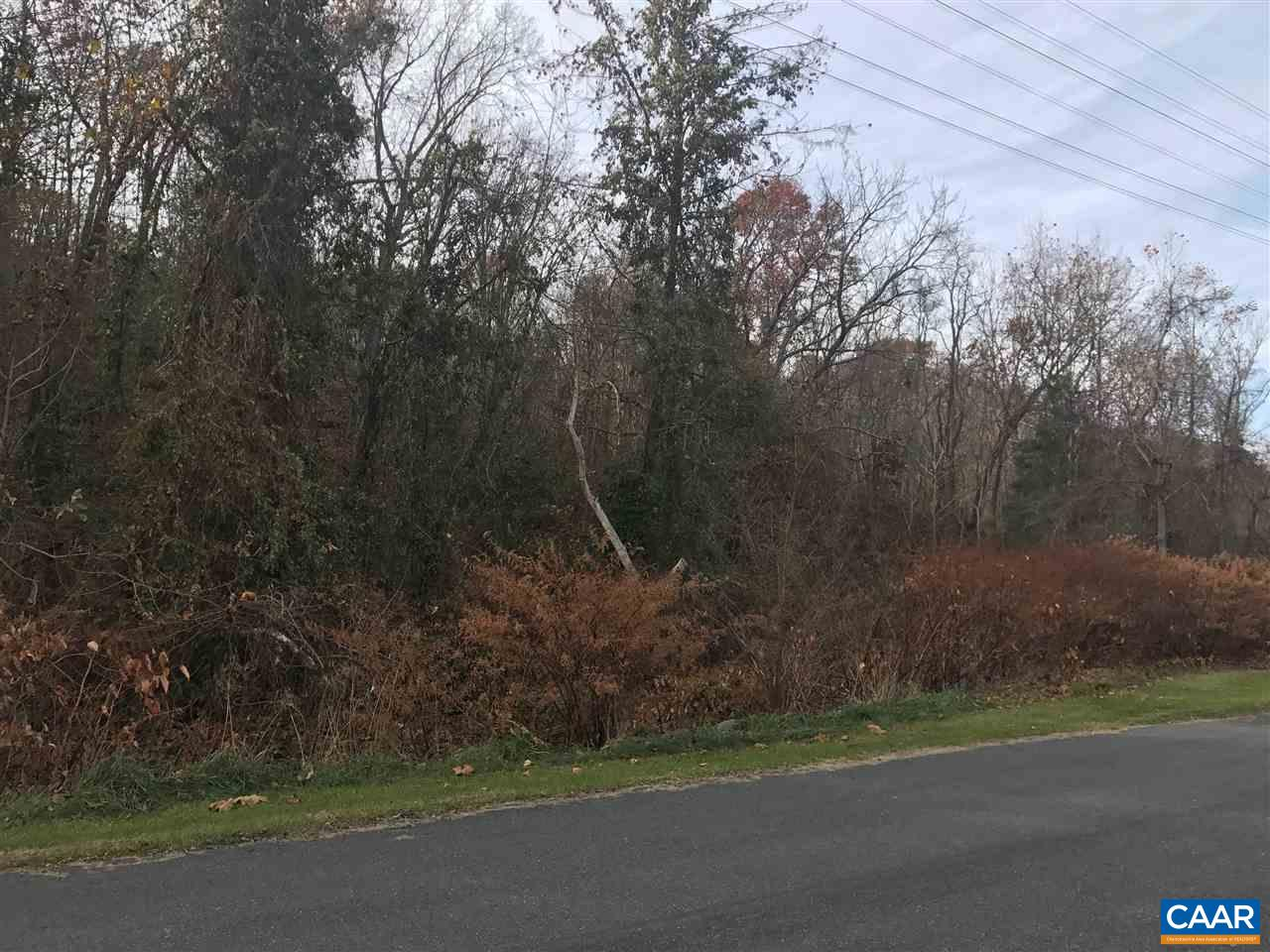 Land for Sale at 1490 10TH Street 1490 10TH Street Waynesboro, Virginia 22980 United States