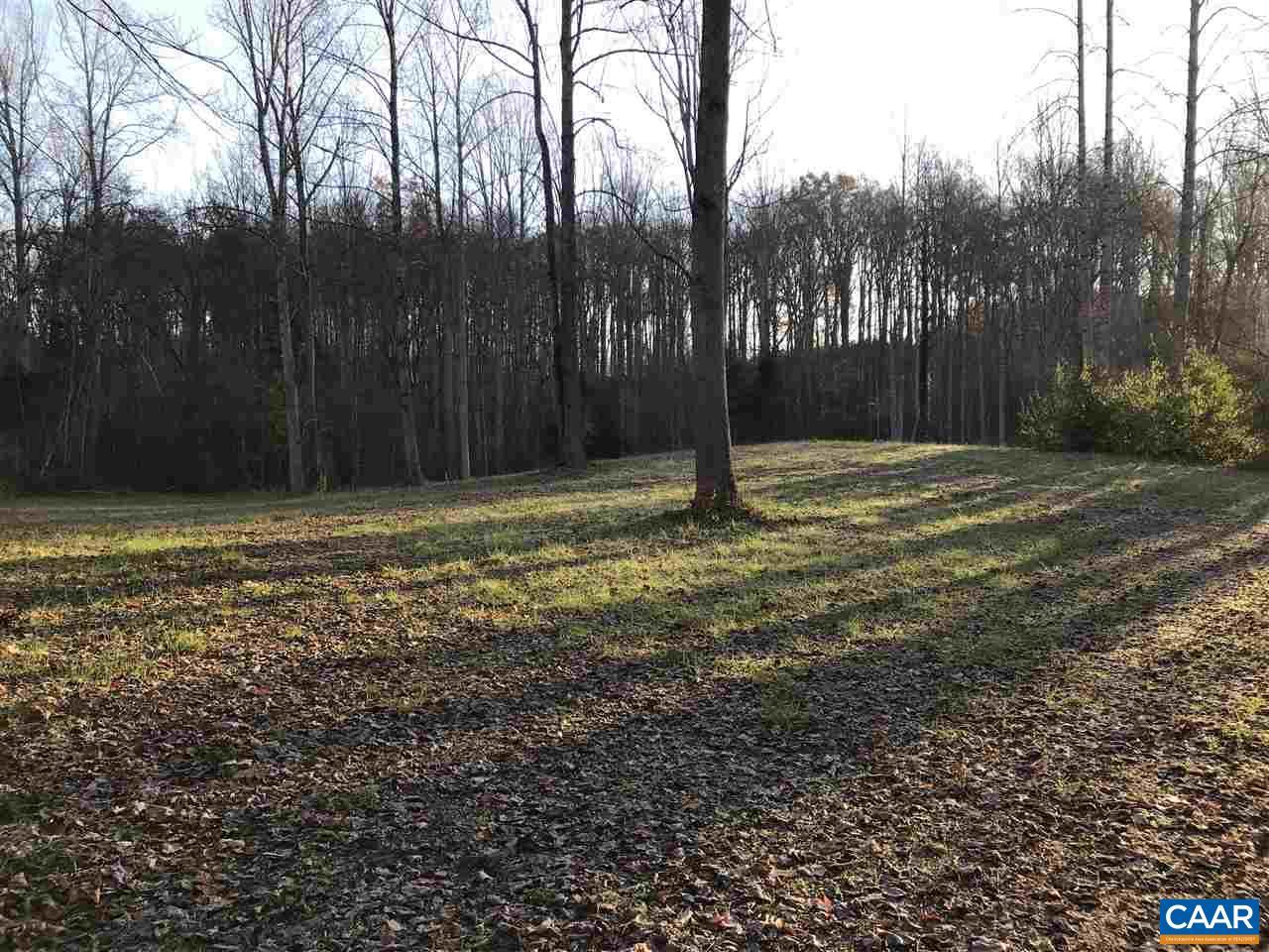 Land for Sale at PINE TORCH Lane PINE TORCH Lane Madison, Virginia 22727 United States