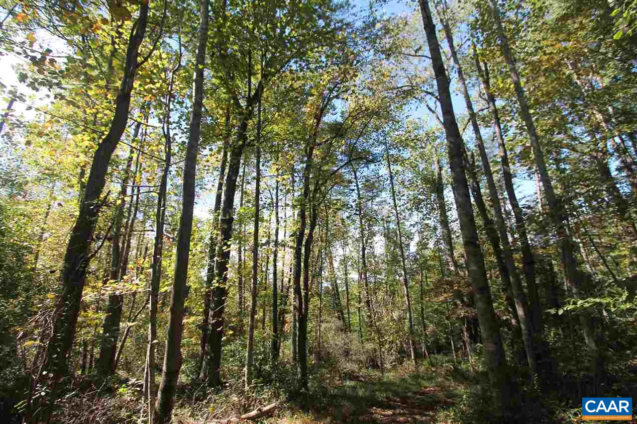 Land for Sale at BOX HOLLY Lane BOX HOLLY Lane Ivy, Virginia 22945 United States