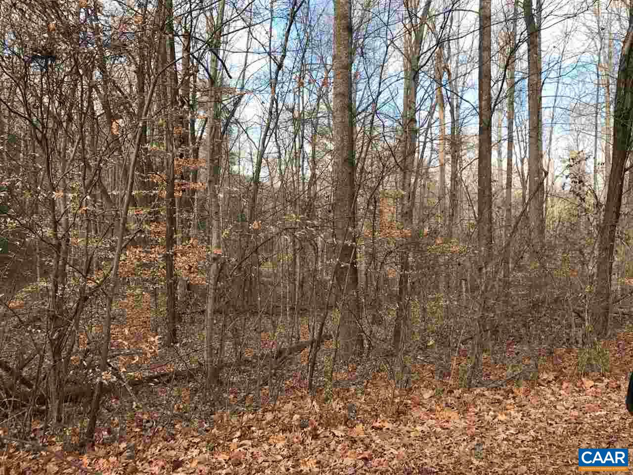 Land for Sale at A S WHITE OAK Drive A S WHITE OAK Drive Madison, Virginia 22727 United States
