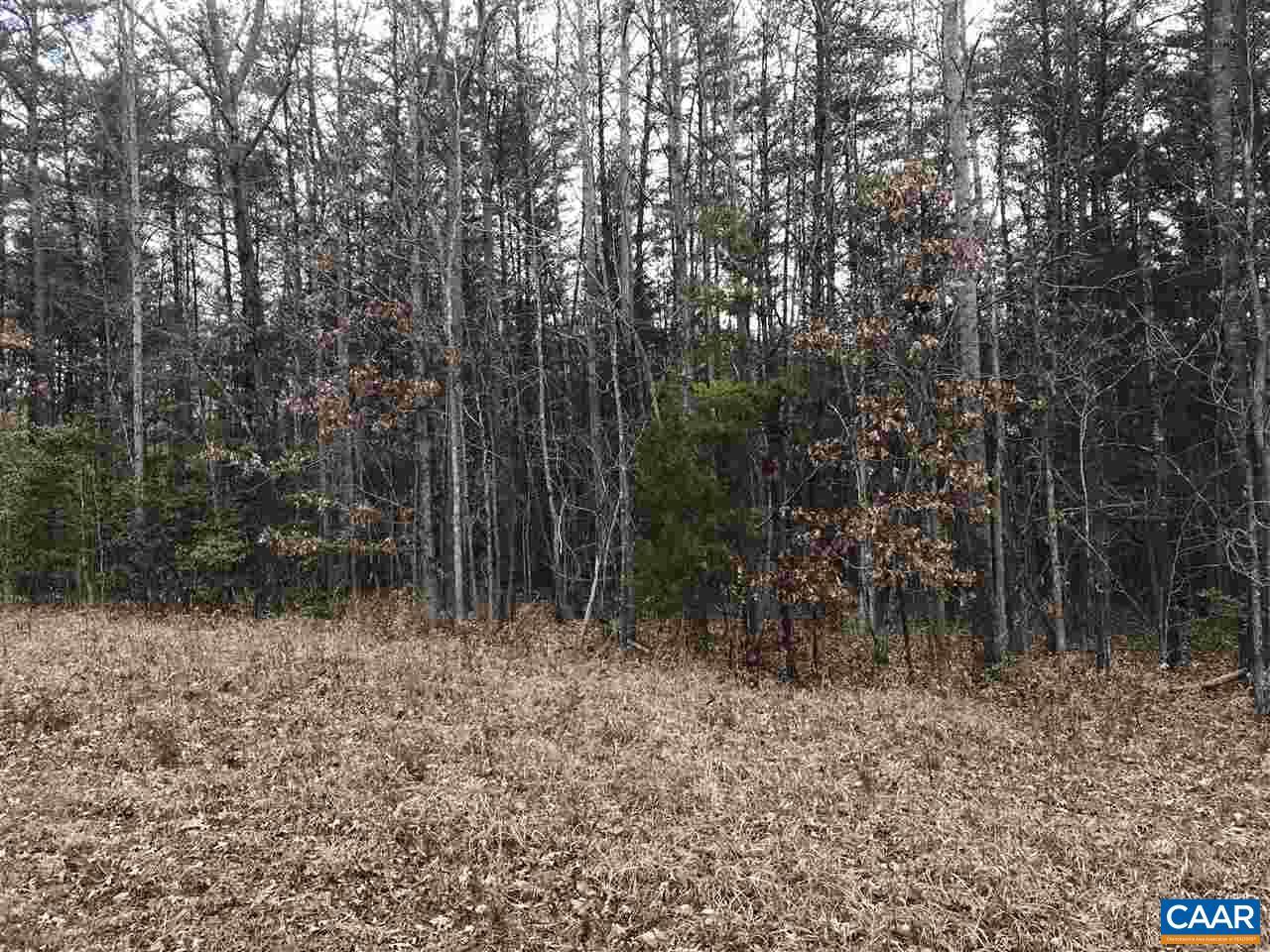 Land for Sale at # DAVIS MILL Road # DAVIS MILL Road Goochland, Virginia 23063 United States