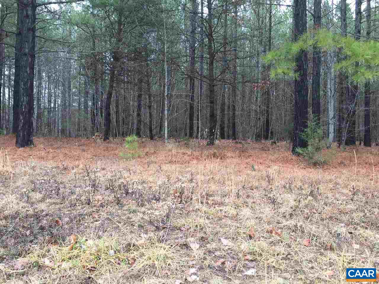 land for sale , MLS #571769,  Georgia Creek Rd
