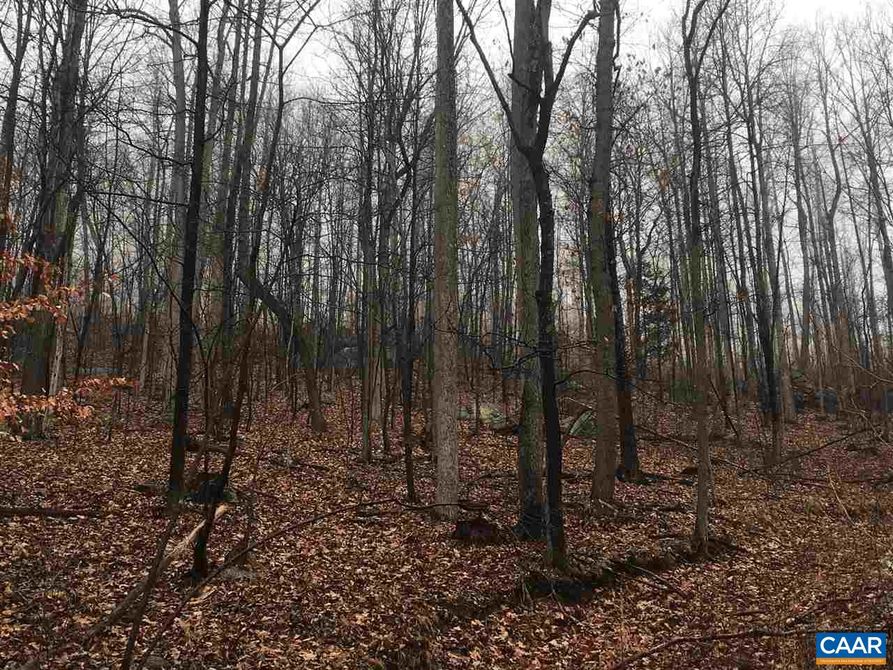 land for sale , MLS #574483,  Monacan Trail Rd