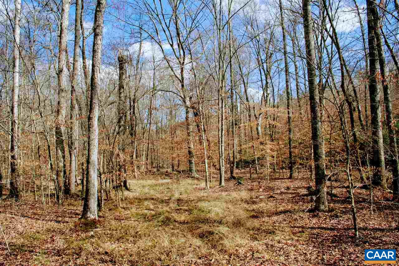 land for sale , MLS #576674, TBD Constitution Rte