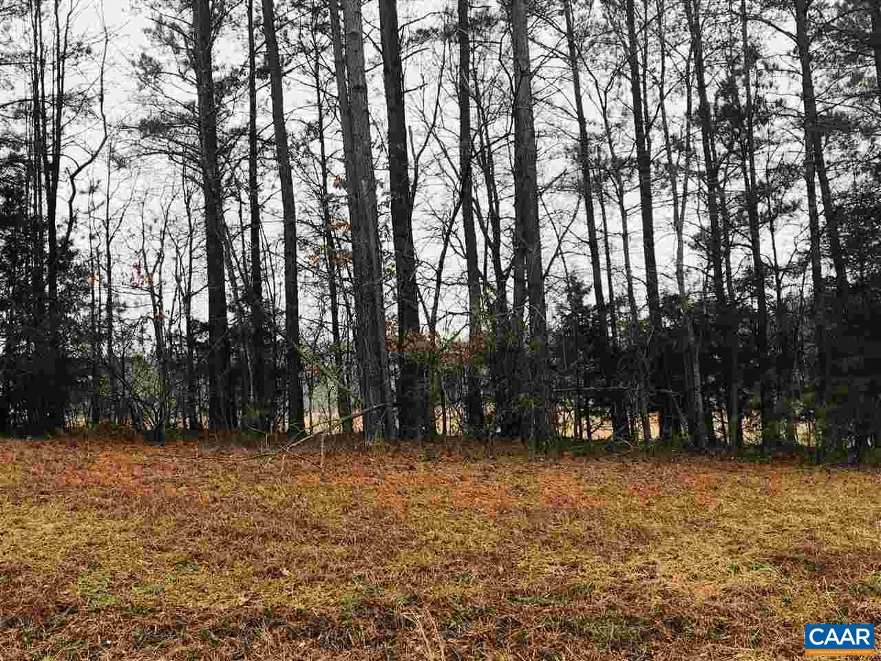 land for sale , MLS #585770, Lot 2 Irby Spring Rd