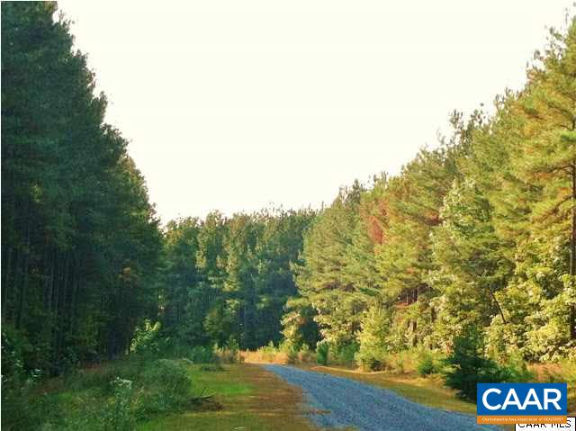 land for sale , MLS #589769, 1 Old Forest Dr