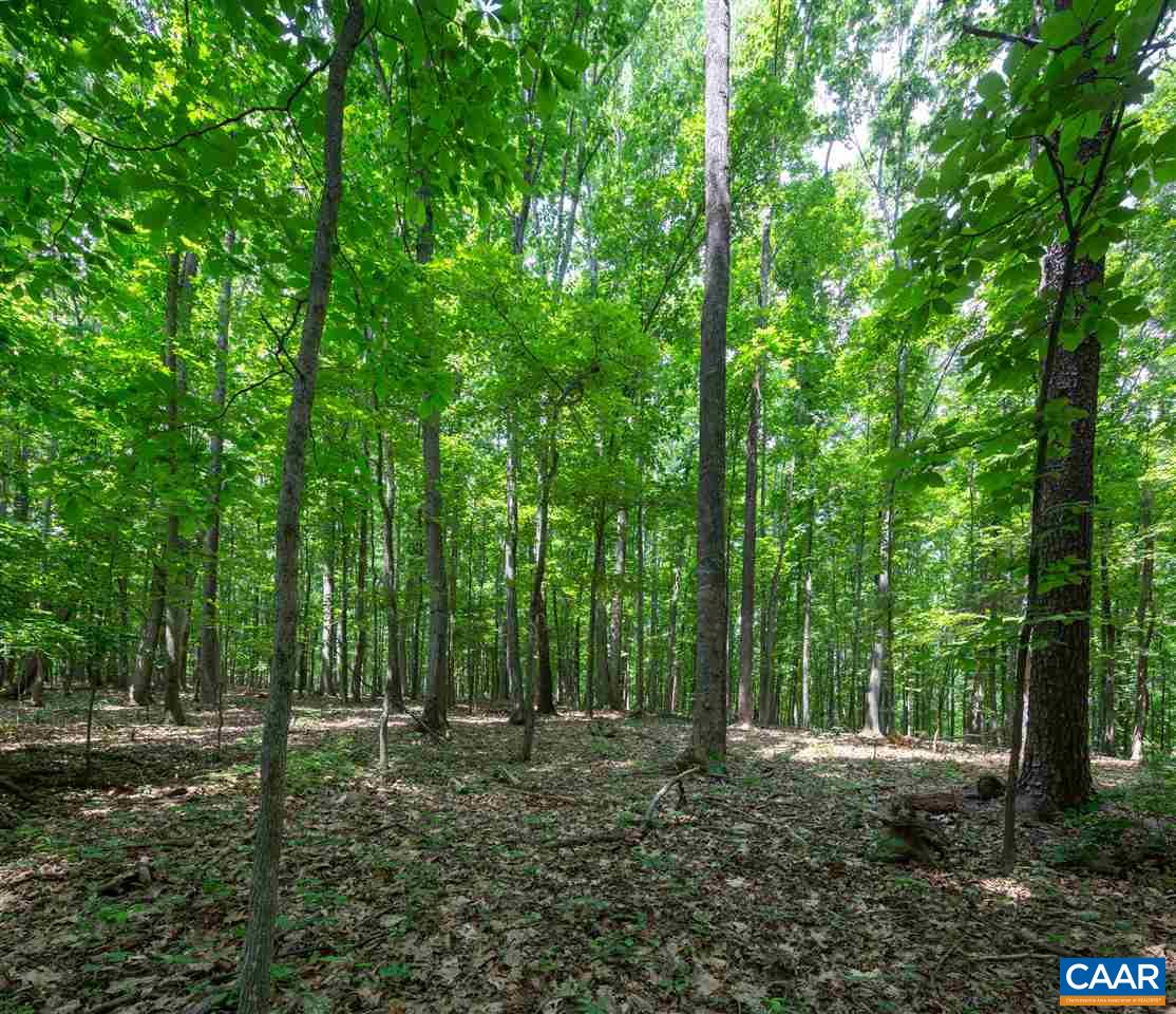 land for sale , MLS #591227, 460 Rocky Hollow Rd