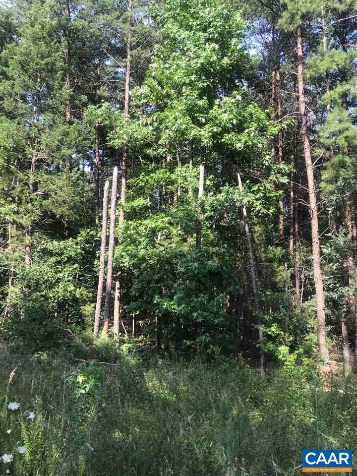 land for sale , MLS #593398, 001 Jackson Heights Rd