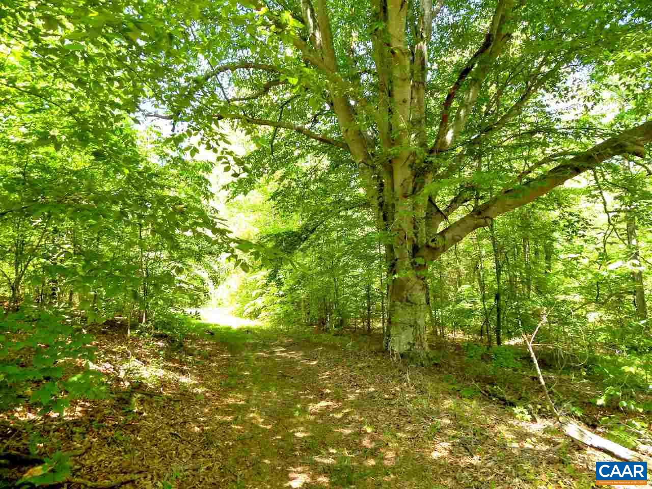land for sale , MLS #597885,  Louisa Rd