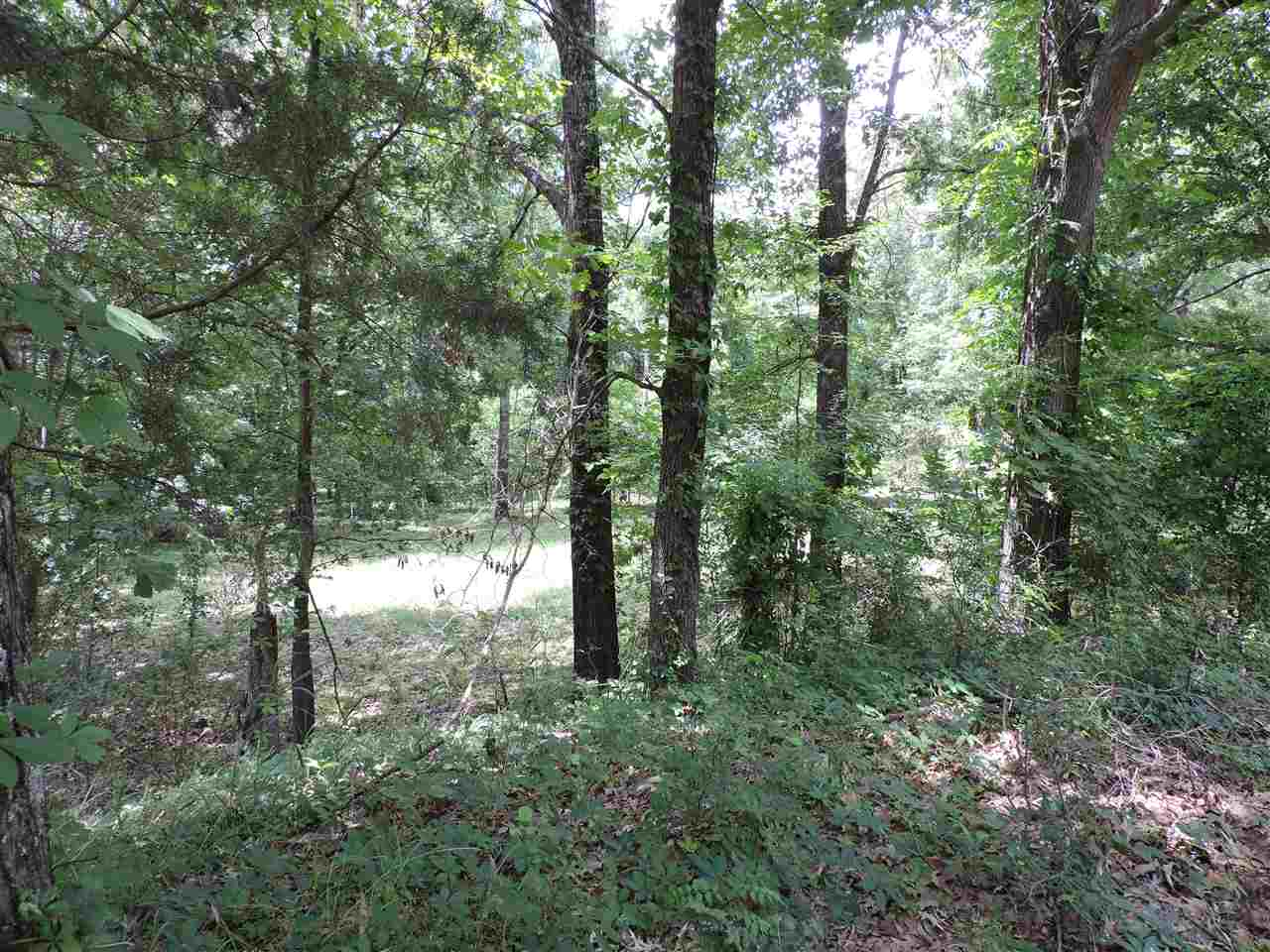 0 Cherry Eads, TN 38028 - MLS #: 10002797