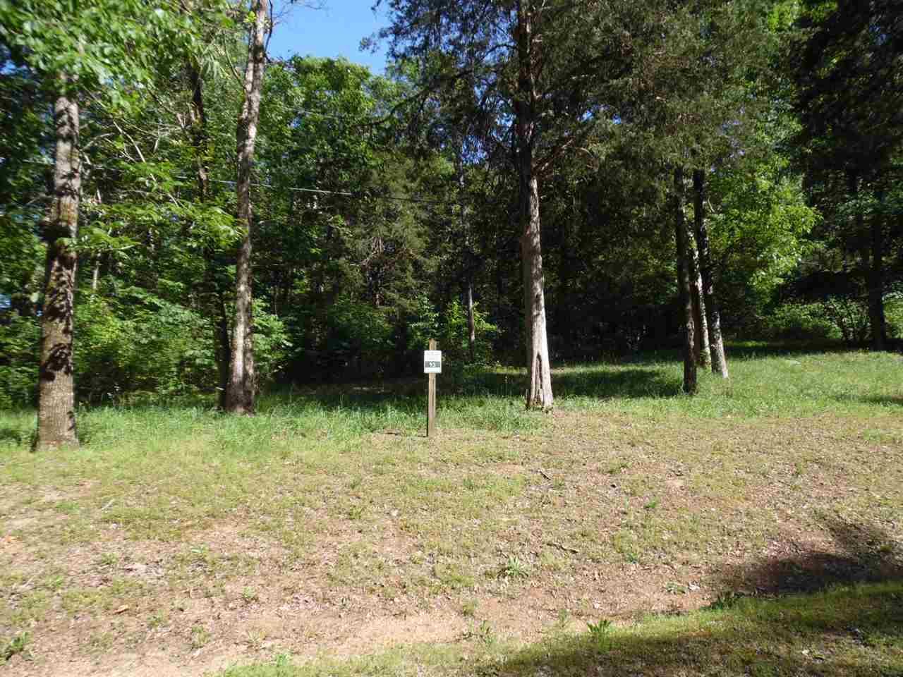 0 Adam Bath Springs, TN 38311 - MLS #: 10002999