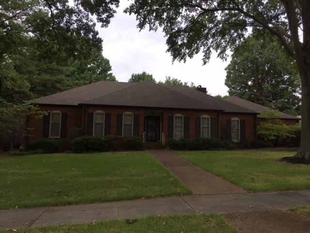 2348 PAPER BIRCH LN, Memphis, TN 38119